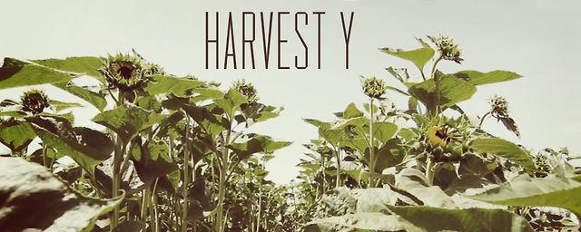 HARVEST Y